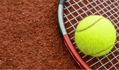 Tenis / badminton
